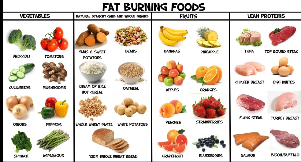 best weight loss foods while dieting