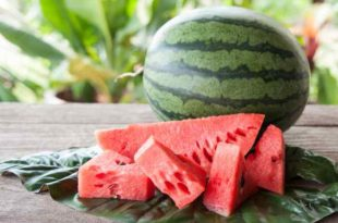 Watermelon and Erectile Dysfunction (ED)